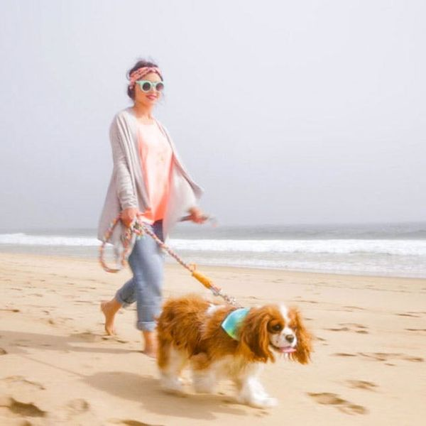 5 Must-Makes for a Doggie Day-cation