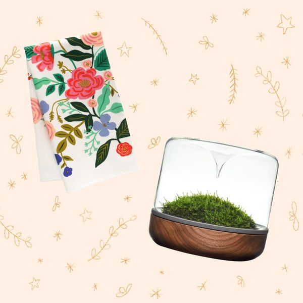 Creative Holiday Gifts for the Plant Lady in Your Life
