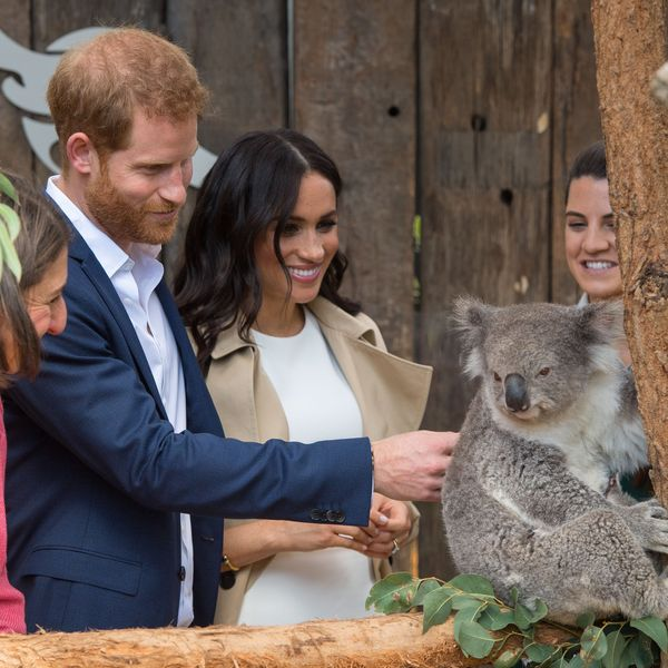 All the Highlights from Prince Harry and Meghan Markle's Fall 2018 Royal Tour