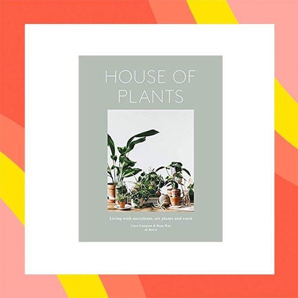 12 Under-$50 Ways to Treat Yo' Plants from Amazon