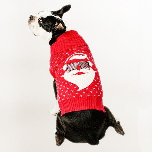 15 Ugly Christmas Sweaters for Your *Pets* to Wear This Holiday