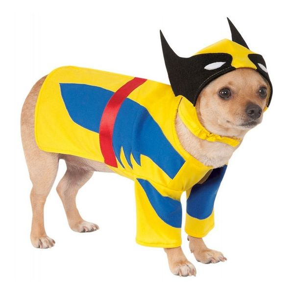 20 Superhero Halloween Costumes for Kids, Grown-Ups *AND* Dogs!