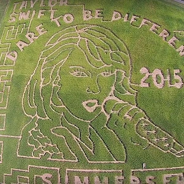 The BritList: Taylor Swift Corn Maze, Man Bun Fedoras and More
