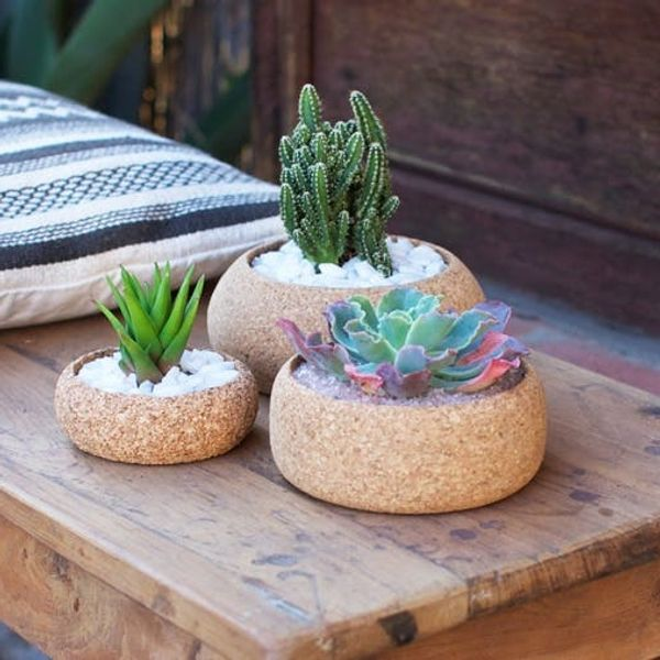 9 Pretty Plant-Inspired Products