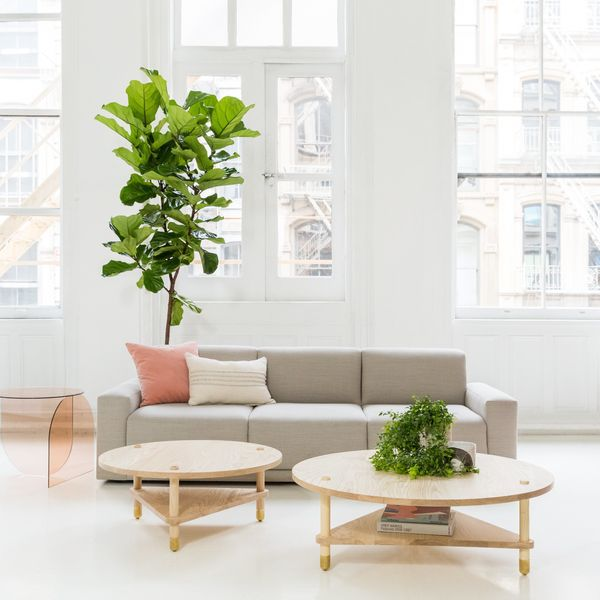 This Customizable Furniture Line Is a Game-Changer for Apartments