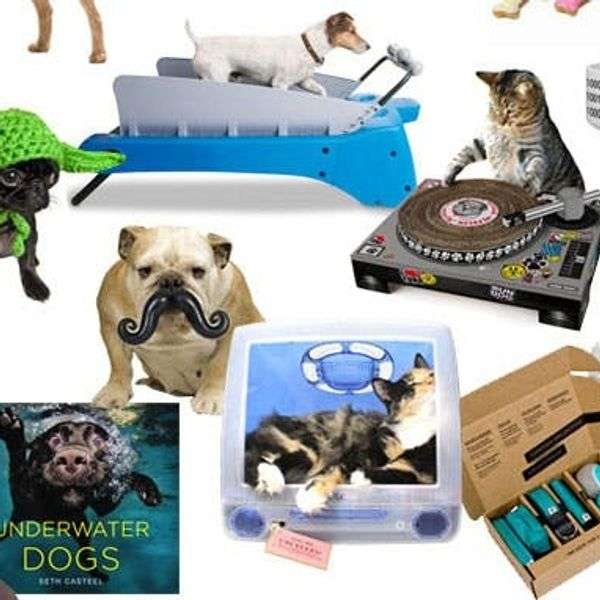 20 Great Gifts for Geeky Pet Owners
