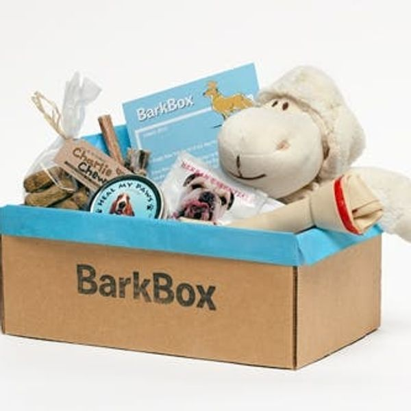 Got A Dog? Sign It Up For BarkBox! (Giveaway)