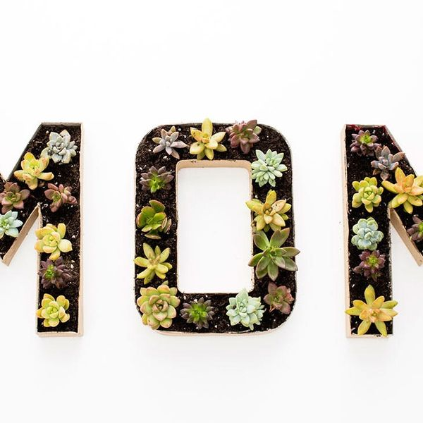 3 Modern DIY Planters to Gift Mom on Mother's Day