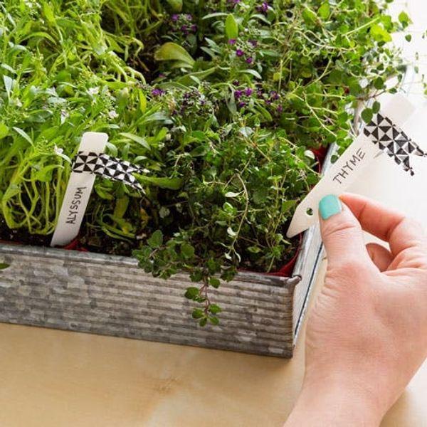 How to Make a Portable Perennial Garden