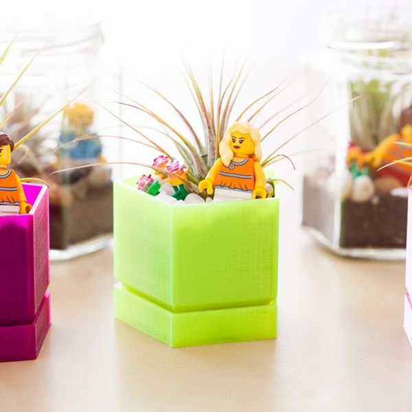 What Do LEGOs, Air Plants and a 3D Printer Have in Common? These Terrariums!