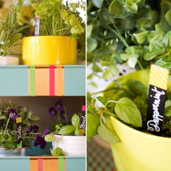 Go Green: A Rolling Herb Garden with Neon Plant Markers