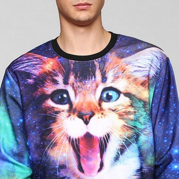 The BritList: Galactic Cats, Dogs in Cars, and More