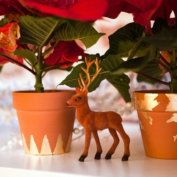 Put Those Poinsettias in DIY Gold Leaf Flower Pots!