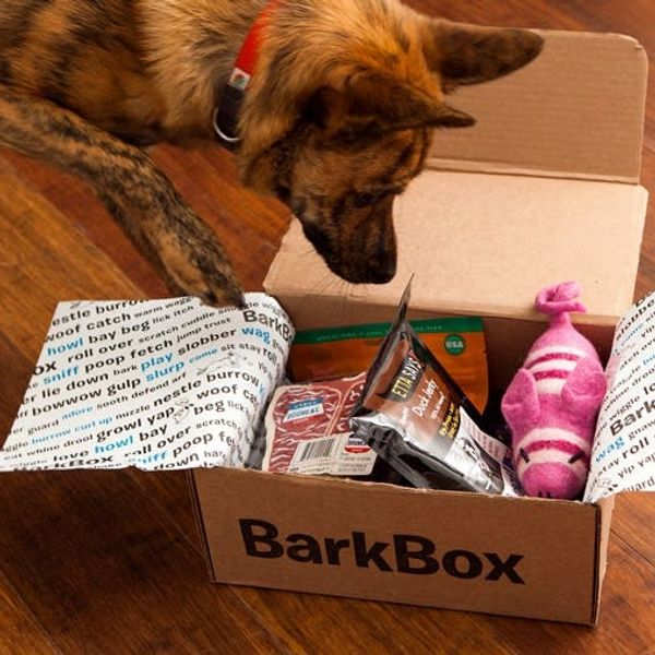 Win One Year of Dog Toys and Treats! ($200 BarkBox Giveaway)