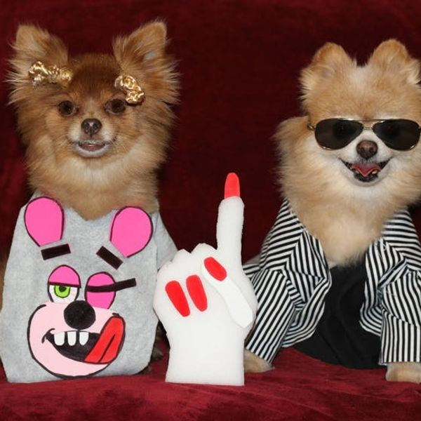 Woof! Announcing the Winners of Our Dog Costume Contest!
