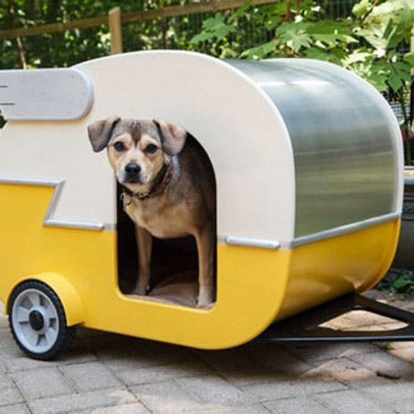 15 Well-Designed Doghouses
