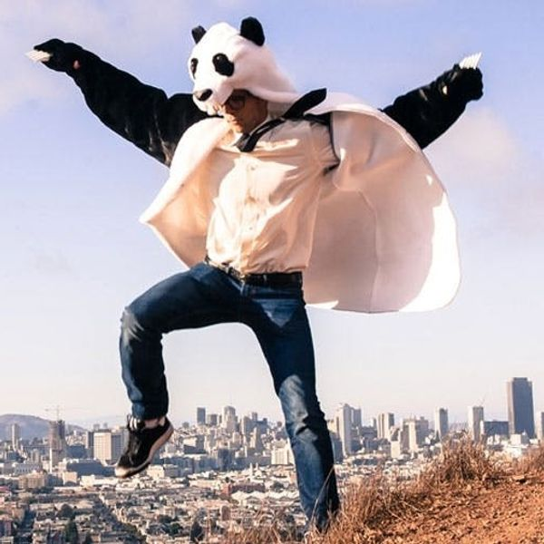 The BritList: Brides Throwing Cats, Panda Coats, and More