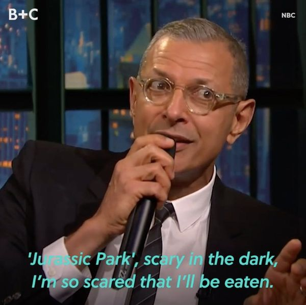 There's No One Quite Like Jeff Goldblum