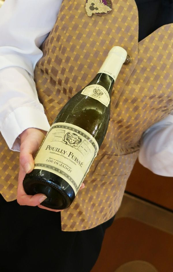 Beginner Wine Mistakes & Myths, Debunked by Sommeliers