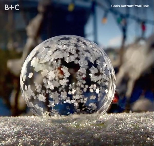 Proof That Frozen Bubbles Are Mesmerizing AF