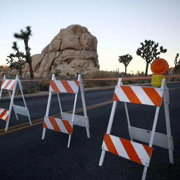 People Pooped All Over Joshua Tree National Park During the Shutdown