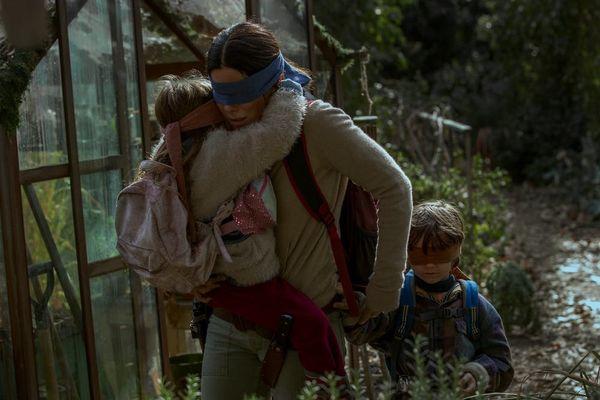 Netflix Warns Viewers Not to Do the 'Bird Box' Challenge
