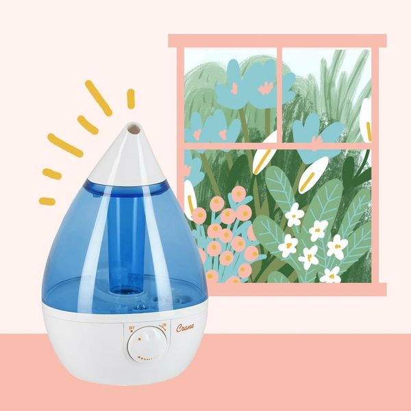 The Best Humidifiers for Cleaner Air and a Healthier Home