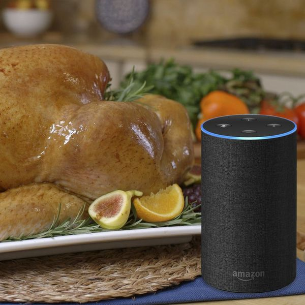 Call the Turkey Talk-Line on Amazon Alexa for All Your Turkey-Cooking Needs