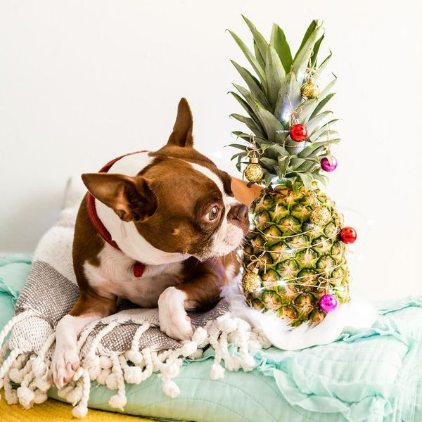 How to DIY a Pineapple Christmas Tree