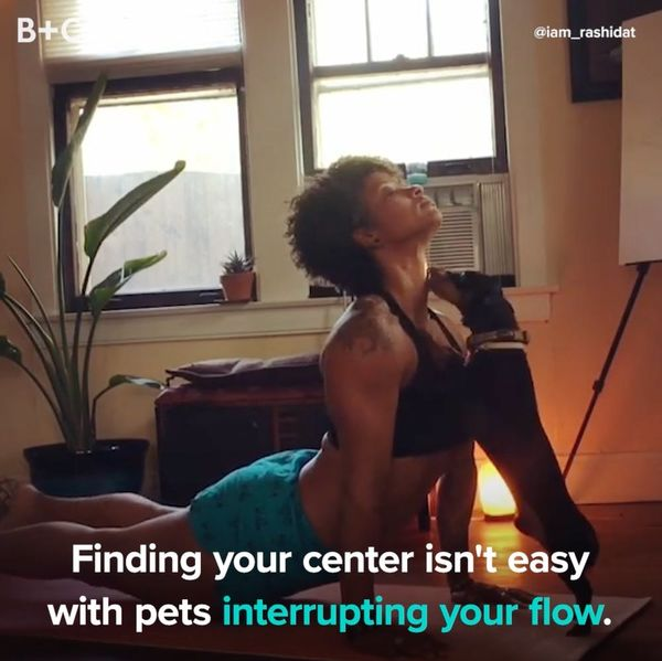 Prepare to LOL at These Pets Interrupting Yoga
