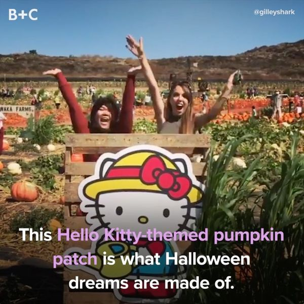 The Hello Kitty Pumpkin Patch Is ADORABLE