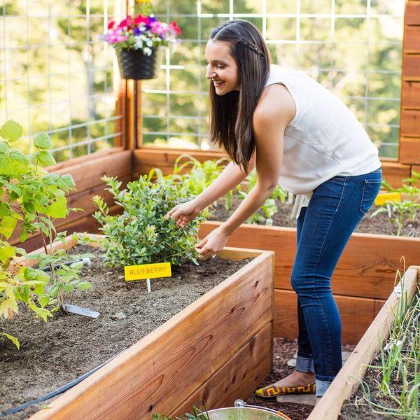 Gardening Hacks + DIYs As Seen on Good Morning America