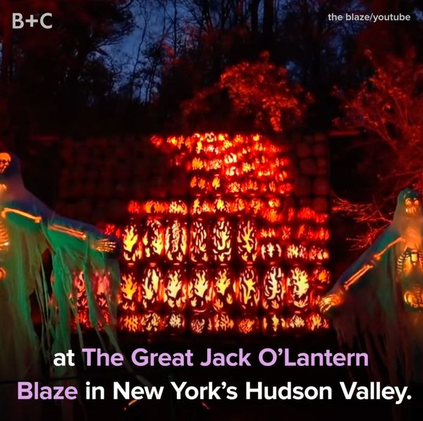 The Great Jack O'Lantern Blaze Is a Halloween Must-See