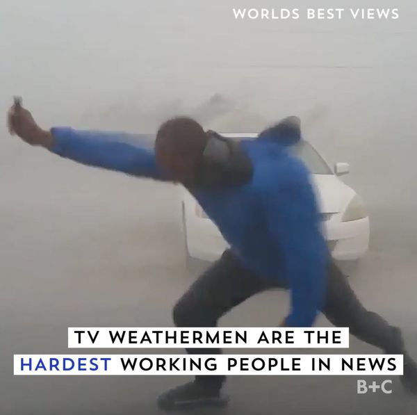 These Weathermen are dedicated AF