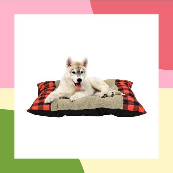 30 Pet Beds That Won't Ruin Your Home Decor