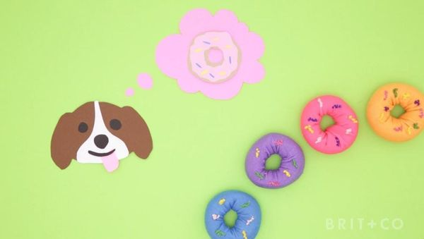 How to DIY Doggie Donuts