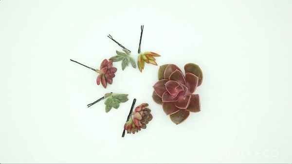 How to Make a Succulent Hairpin