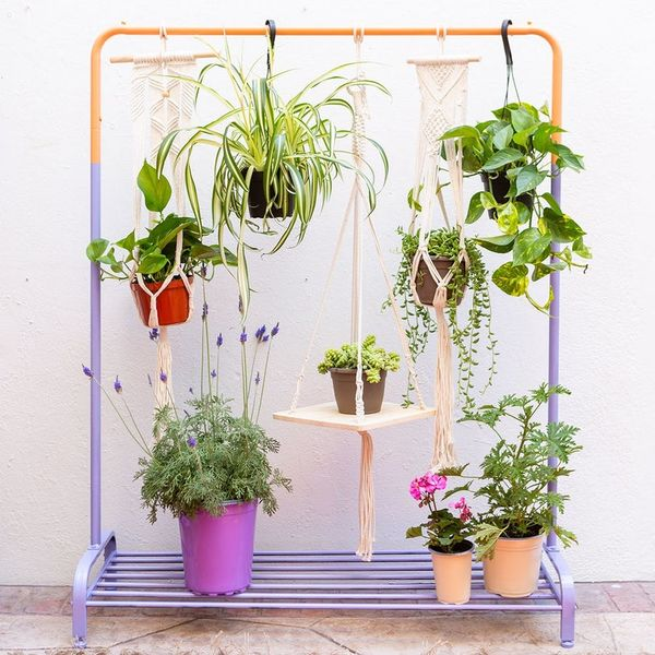 How to Turn a Clothing Rack Into a Vertical Garden