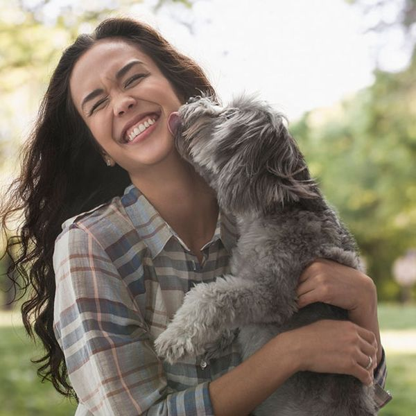 Here's the Lowdown on Emotional Support Animals