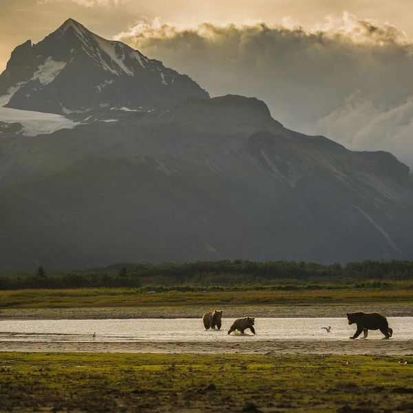 7 National Parks You Haven't Heard Of But Should Absolutely Visit
