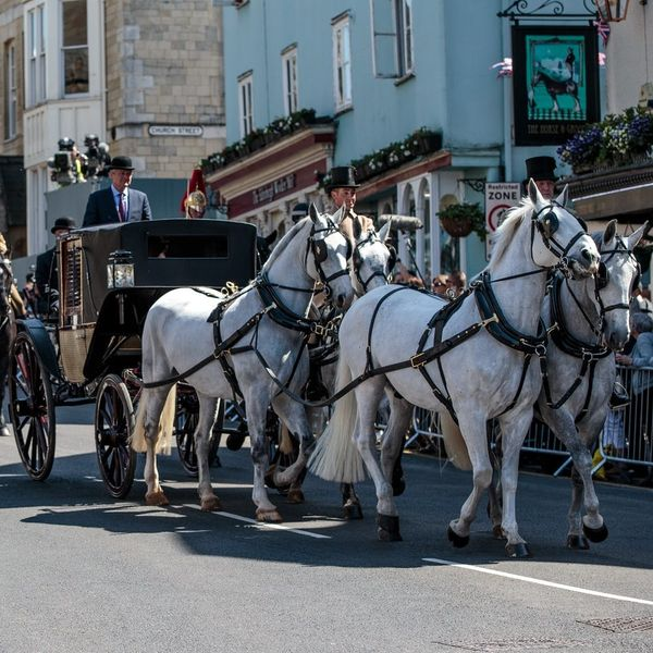 Here's a Sneak Peek at What Prince Harry and Meghan Markle's Carriage Procession Will Look Like