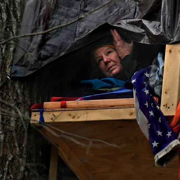 From Tree-Sitters to Water Protectors: Meet the Women On the Front Lines of Eco-Activism