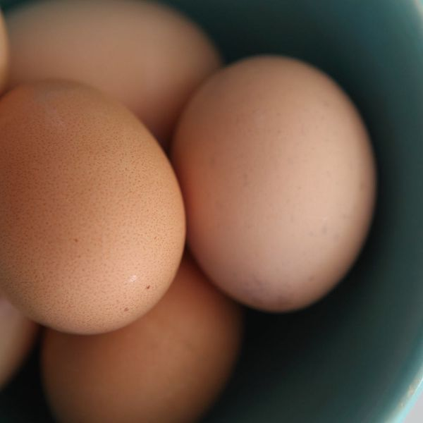 A Massive Egg Recall Has Been Issued for Salmonella in 9 States