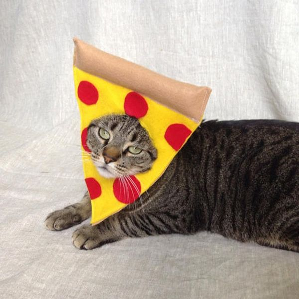12 Cat Costumes to Meow for This Halloween