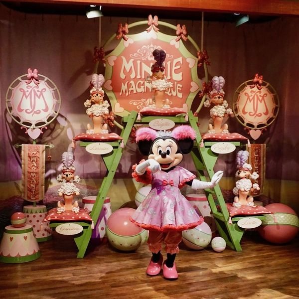 21 Major Differences Between Disneyland and Disney World