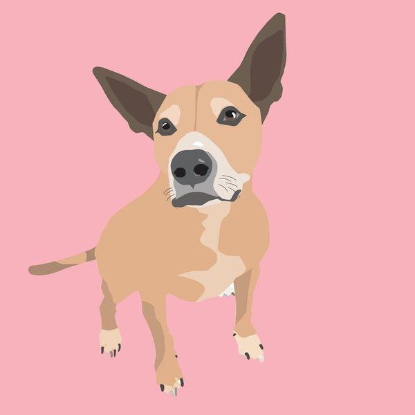 Hey, Pet Parents! Turn Your Fur Baby Photos into an Adorable Digital Illustration