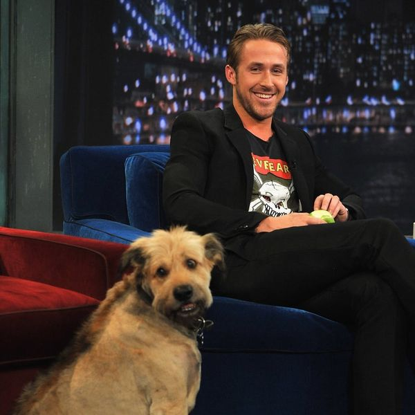 Ryan Gosling's Tribute to His Dog George Will Break Your Heart