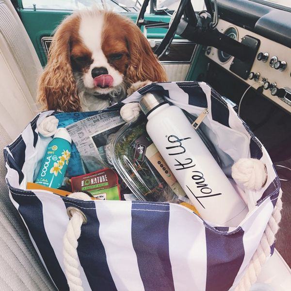 8 Healthy Beach Bag Essentials