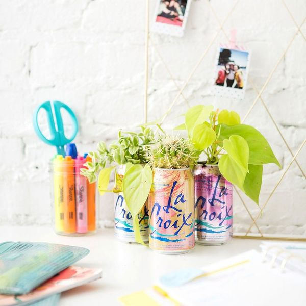 Turn Your Empty La Croix Cans into These Adorable Planters