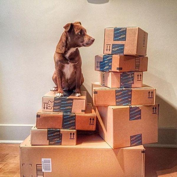 Here Are the Amazon Prime Day Deals Announced So Far
